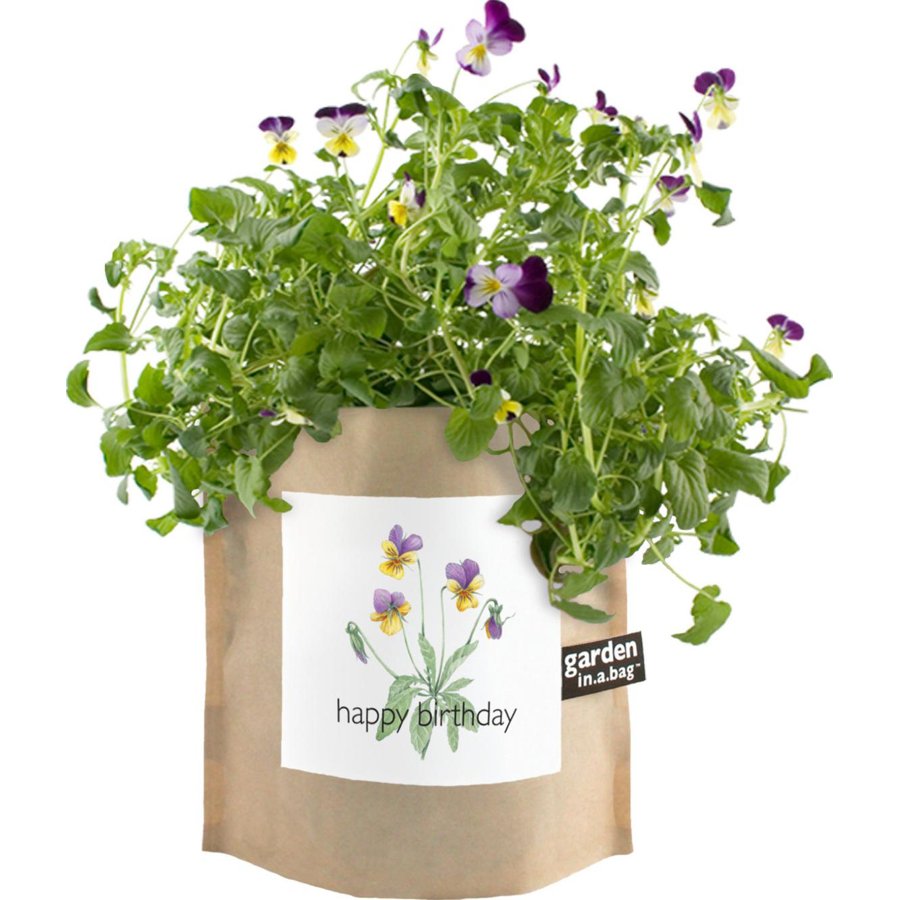Image For Potting Shed Creations - Garden in a Bag - Happy Birthday