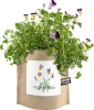 Cover Image for Potting Shed Creations - Garden in a Bag - Happy Birthday
