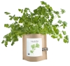 Cover Image for Potting Shed Creations - Garden in a Bag - Cilantro