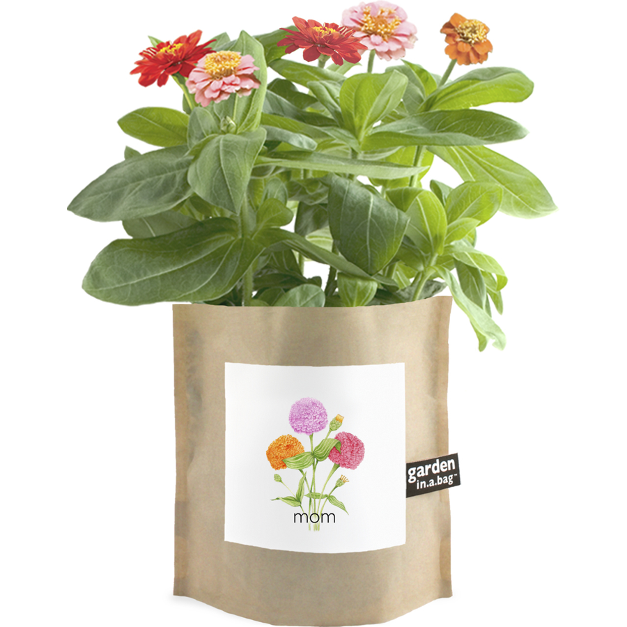 Image For Potting Shed Creations - Garden in a Bag - Mom