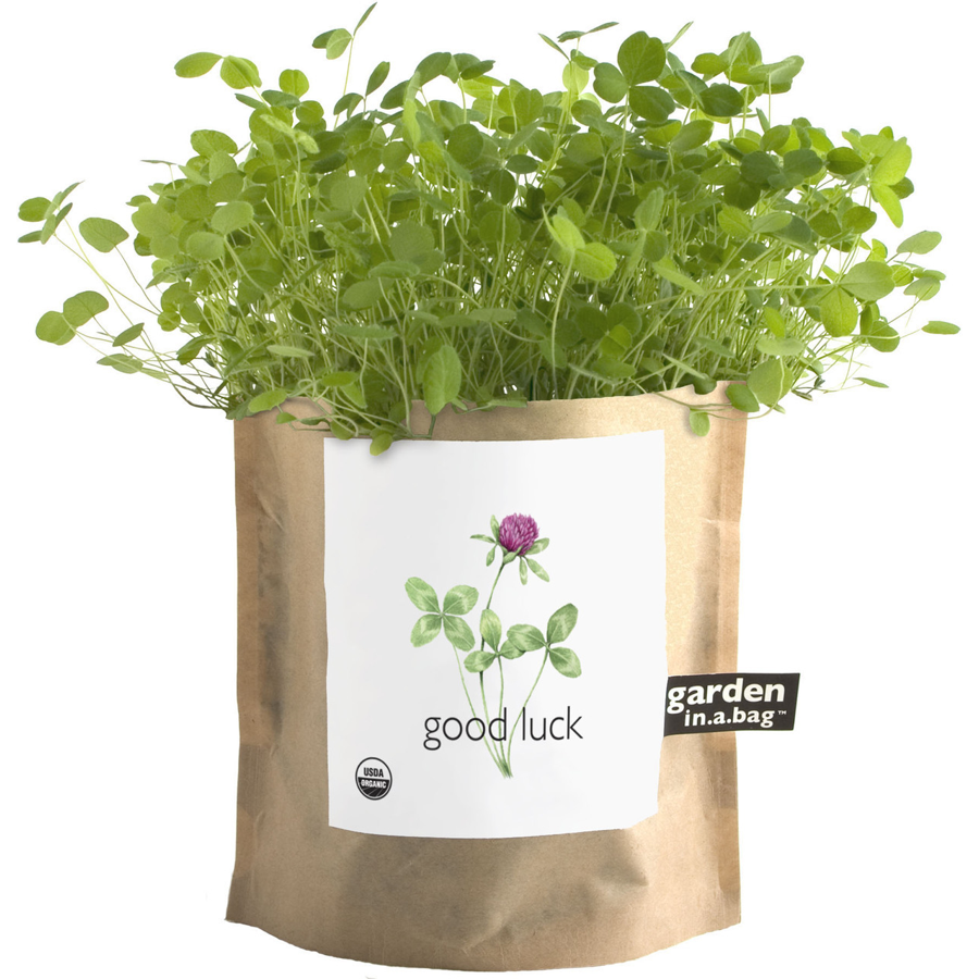 Image For Potting Shed Creations - Garden in a Bag - Good Luck